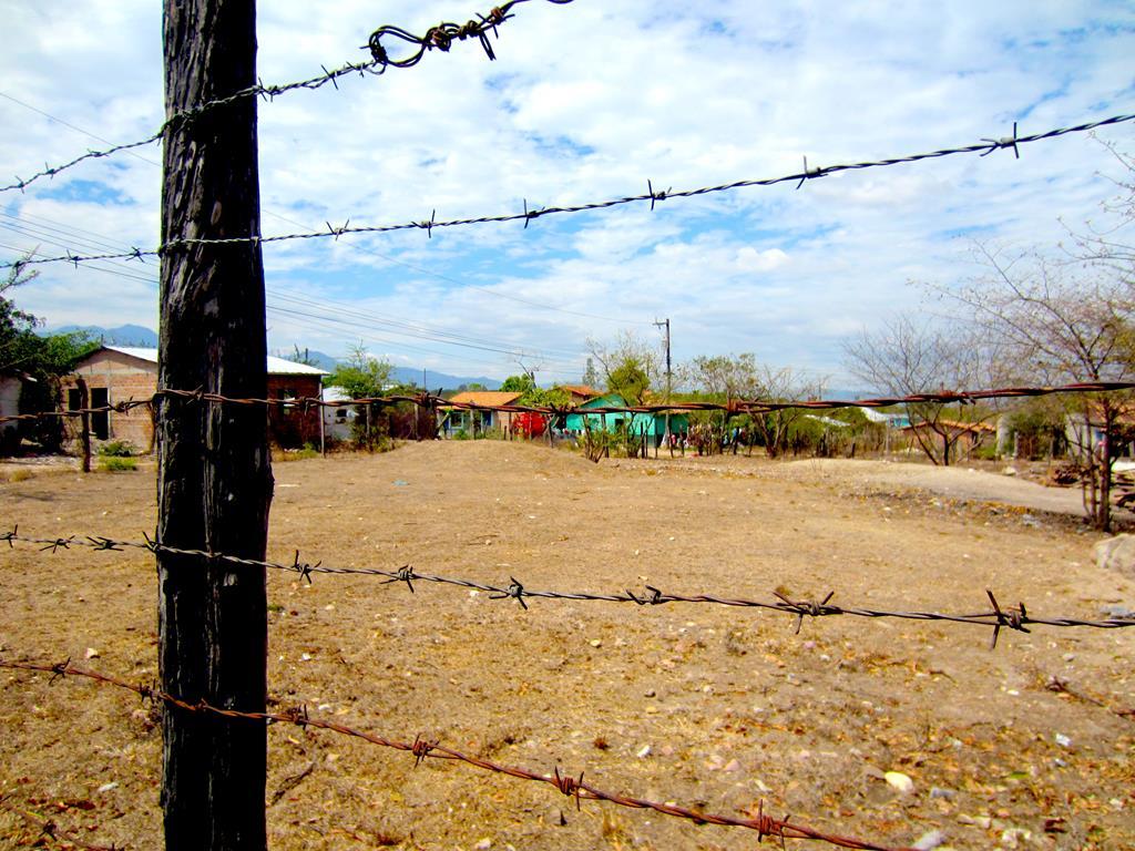 Stemningsbillede af husene på landet – langt væk fra hovedstadens mylder.